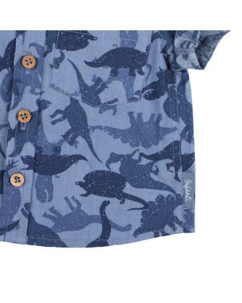 Camisa dinosaurios