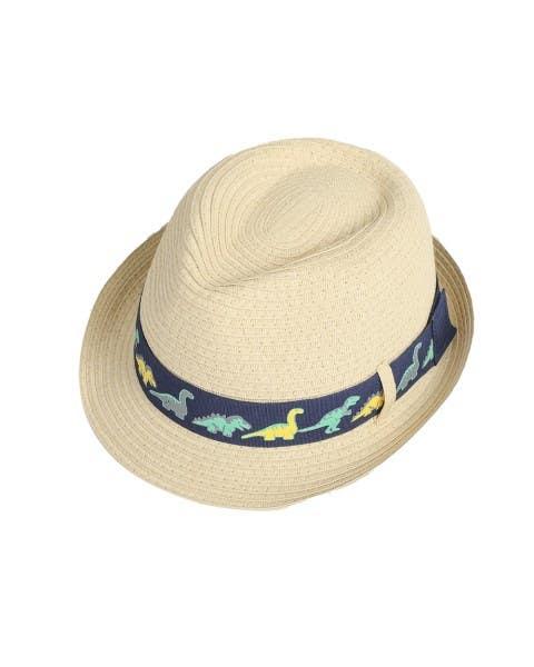 Sombrero Dinos