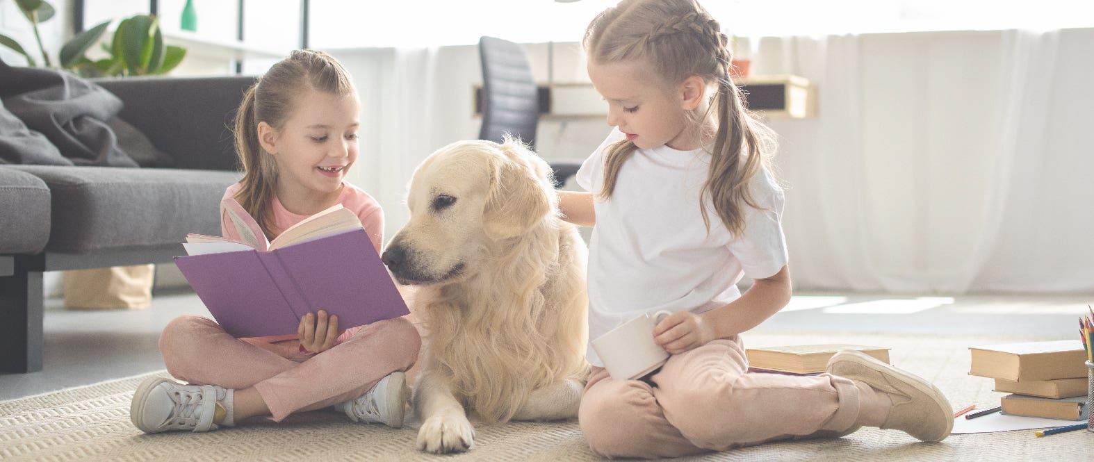 Niños y mascotas: ¿Qué cuidados debo tener?